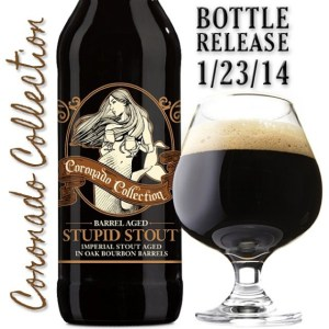 Barrel Aged Stupid Stout